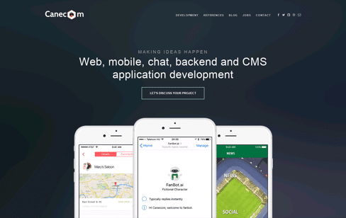 Canecom: Mobile, chabtot, backend, CMS development Web Design