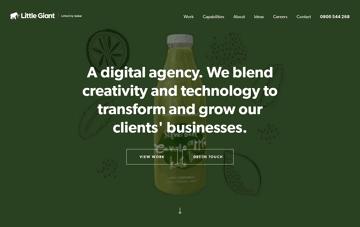 Little Giant, Digital Agency Auckland, NZ  Web Design