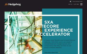 Hedgehog: A Full-Service Digital Consultancy  Web Design