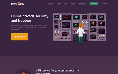 SmartyDNS Web Design