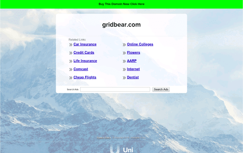 Grid Bear - Passion Creative Studio Web Design