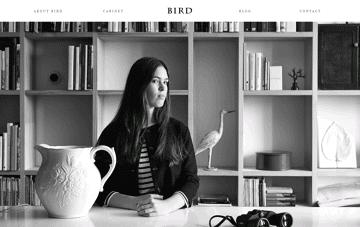 Bird Boutique Web Design