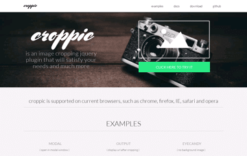 croppic Web Design