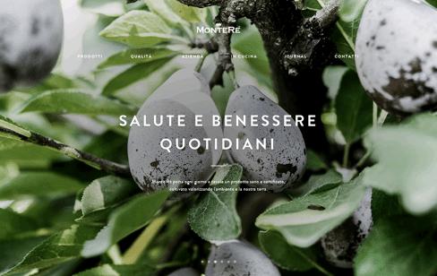 Monte Ré Web Design