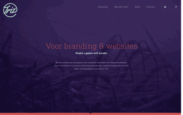 Triz - Voor branding & websites 	 Web Design