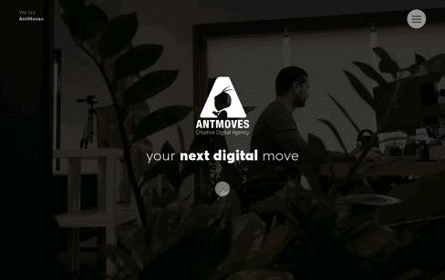 AntMoves Creative Digital Agency Web Design