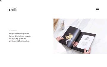 Graphic design agency & web design – Chilli – Logo design - Branding & webdesign Web Design