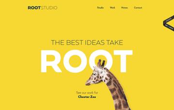 Root Studio Graphic Design Web Design