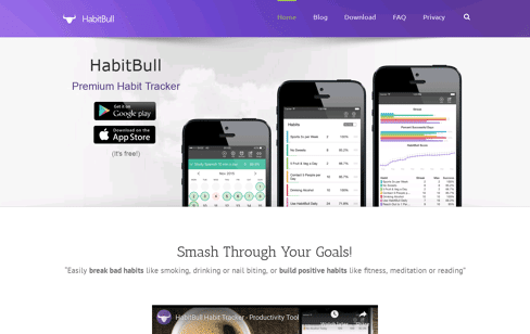 HabitBull 	 Web Design