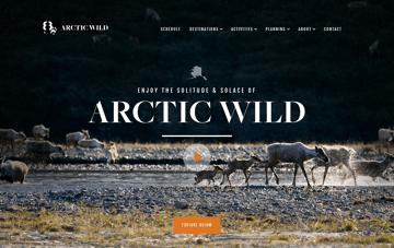 Arctic Wild Web Design