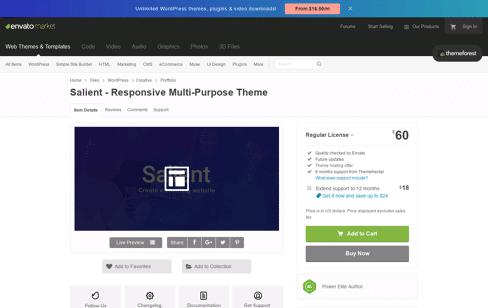 Salient Wordpress Theme Web Design