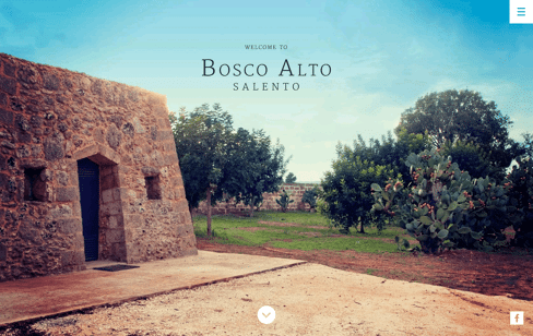 Bosco Alto Web Design