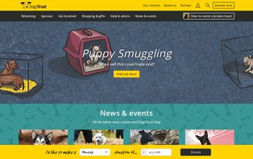 Dogs Trust Web Design