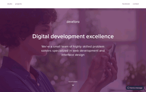 Develora Web Design