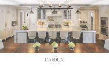 Peter Cadoux Architects Web Design