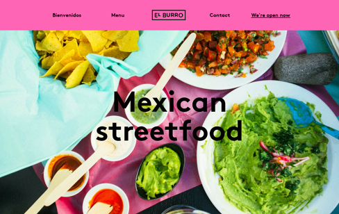 El Burro Web Design