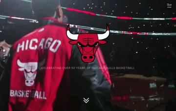 Chicago Bulls History Web Design