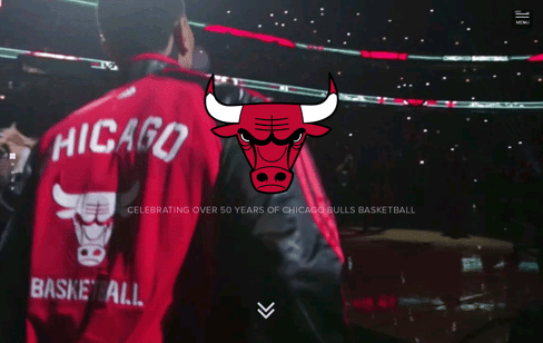 Chicago Bulls History Web Design