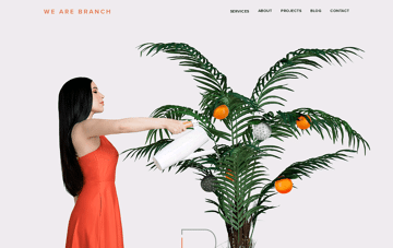 We Are Branch Web Design