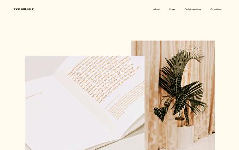 Venamour Web Design
