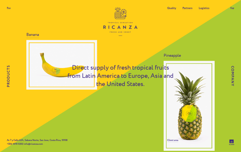 Ricanza Web Design
