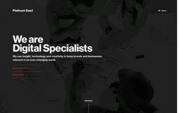 Platinum Seed Web Design