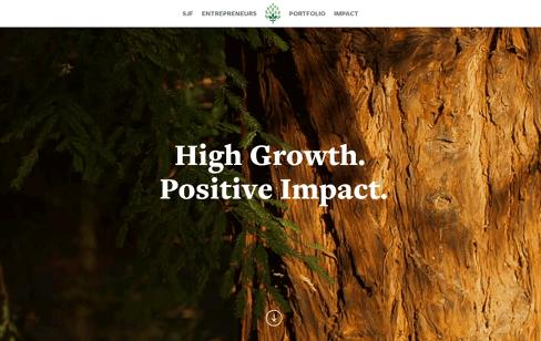 SJF Ventures Web Design