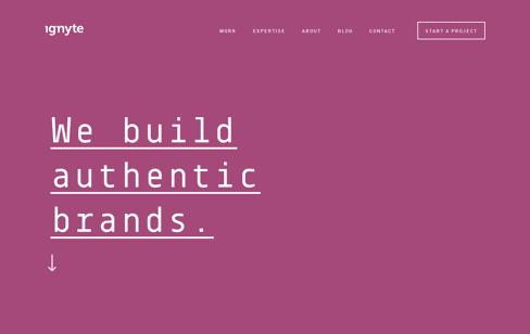 Ignyte Web Design