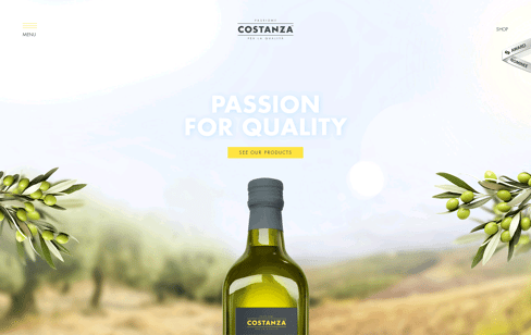 Costanza Web Design