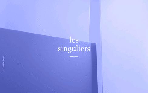 Les Singuliers Web Design