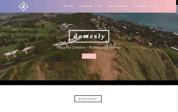 Damesly Web Design