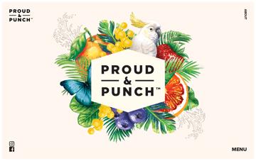 Proud & Punch Web Design