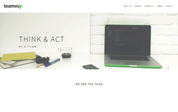Teamvoy Web Design