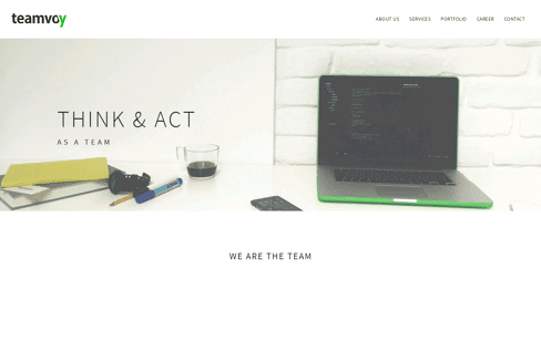 Teamvoy Web Design