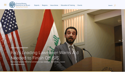 United States Institute of Peace Web Design