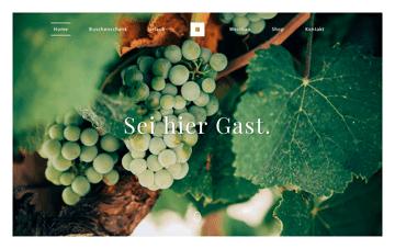 Buschenschank Gnaser Web Design