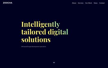 Zoocha Web Design