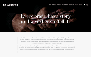 The Seed Group Web Design