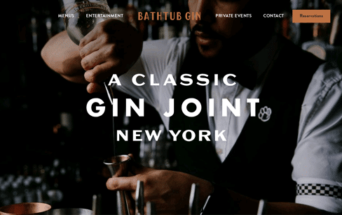 Bathtub Gin Web Design