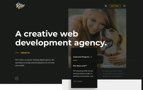 Rise Creative Web Development Agency Web Design