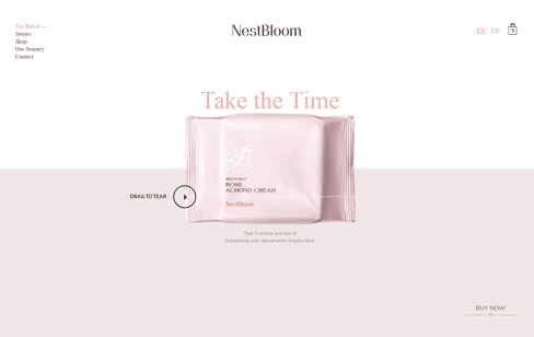 NestBloom Web Design