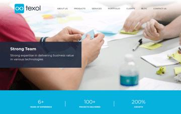 Texol Web Design